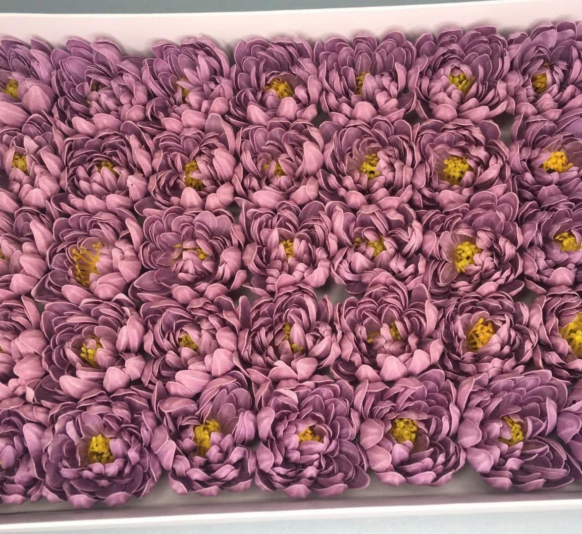Хризантема — фиолетовая 50 шт