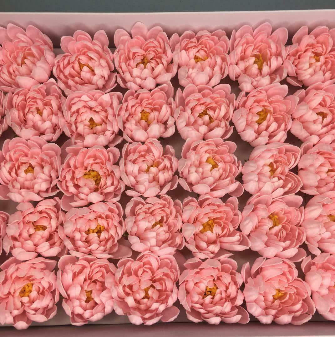 Хризантема — розовая 50 шт
