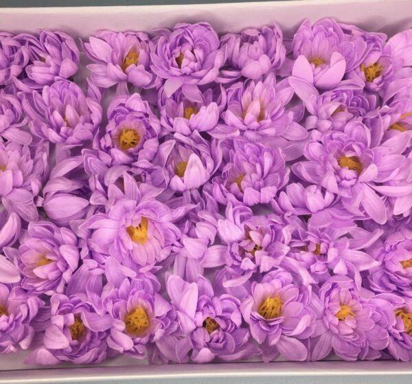 Хризантемы из мыла - 1 200 Цвет: сиреневый