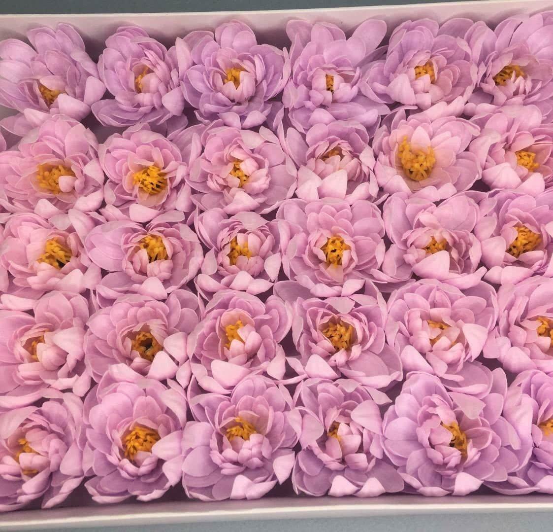 Хризантема — светло-сиреневая 50 шт
