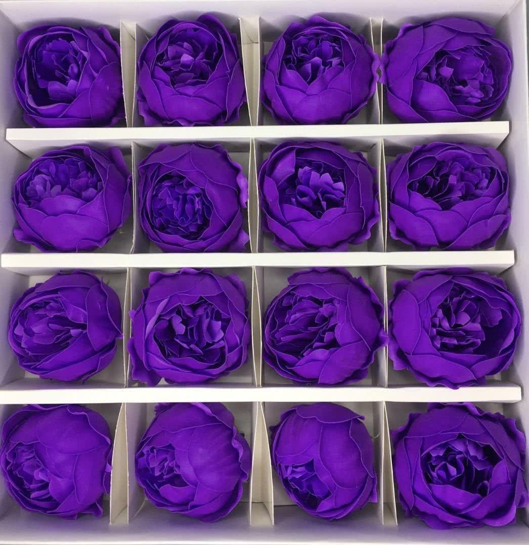 Пион — фиолетовый 16 шт