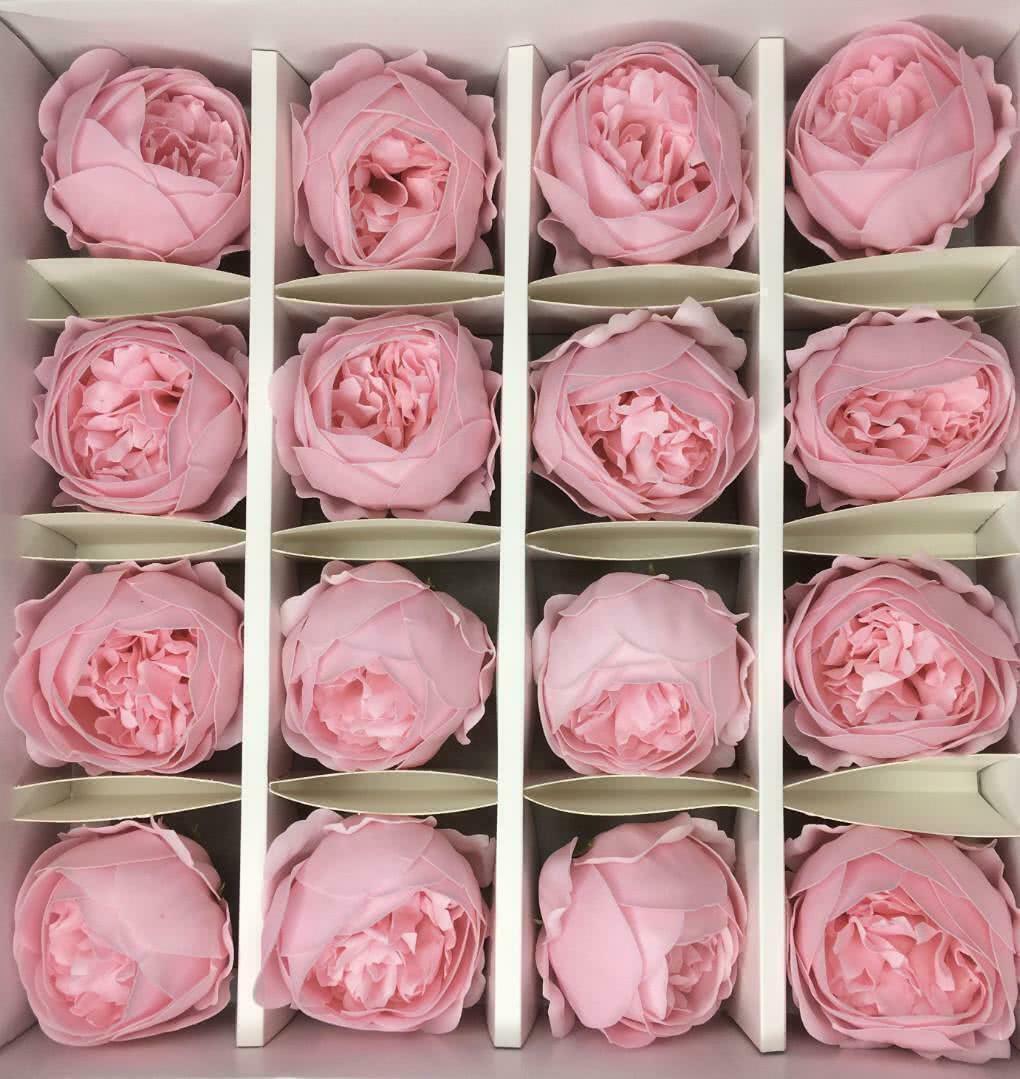 Пион — нежно-розовый 16 шт