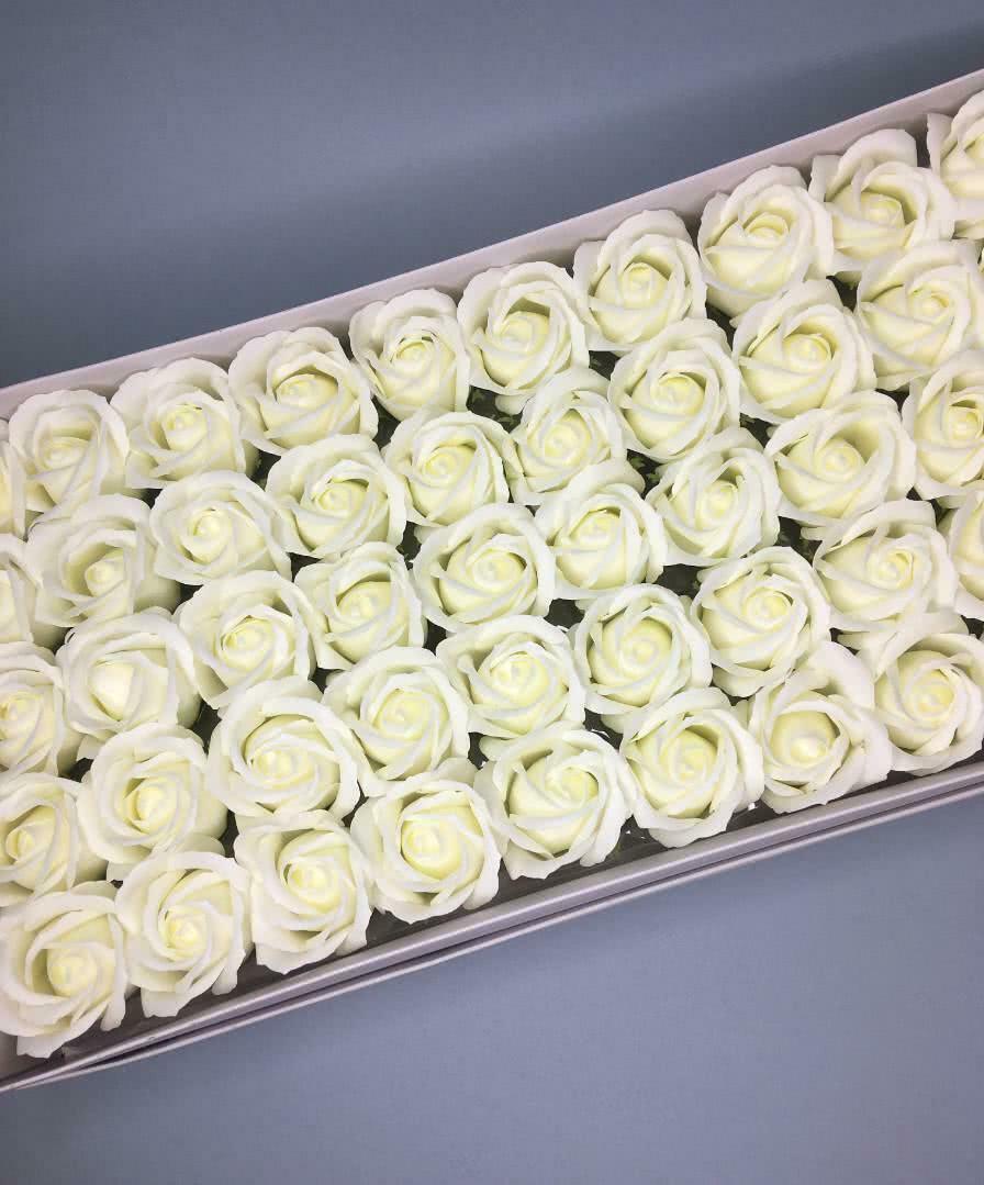 Роза — шампань 50 шт